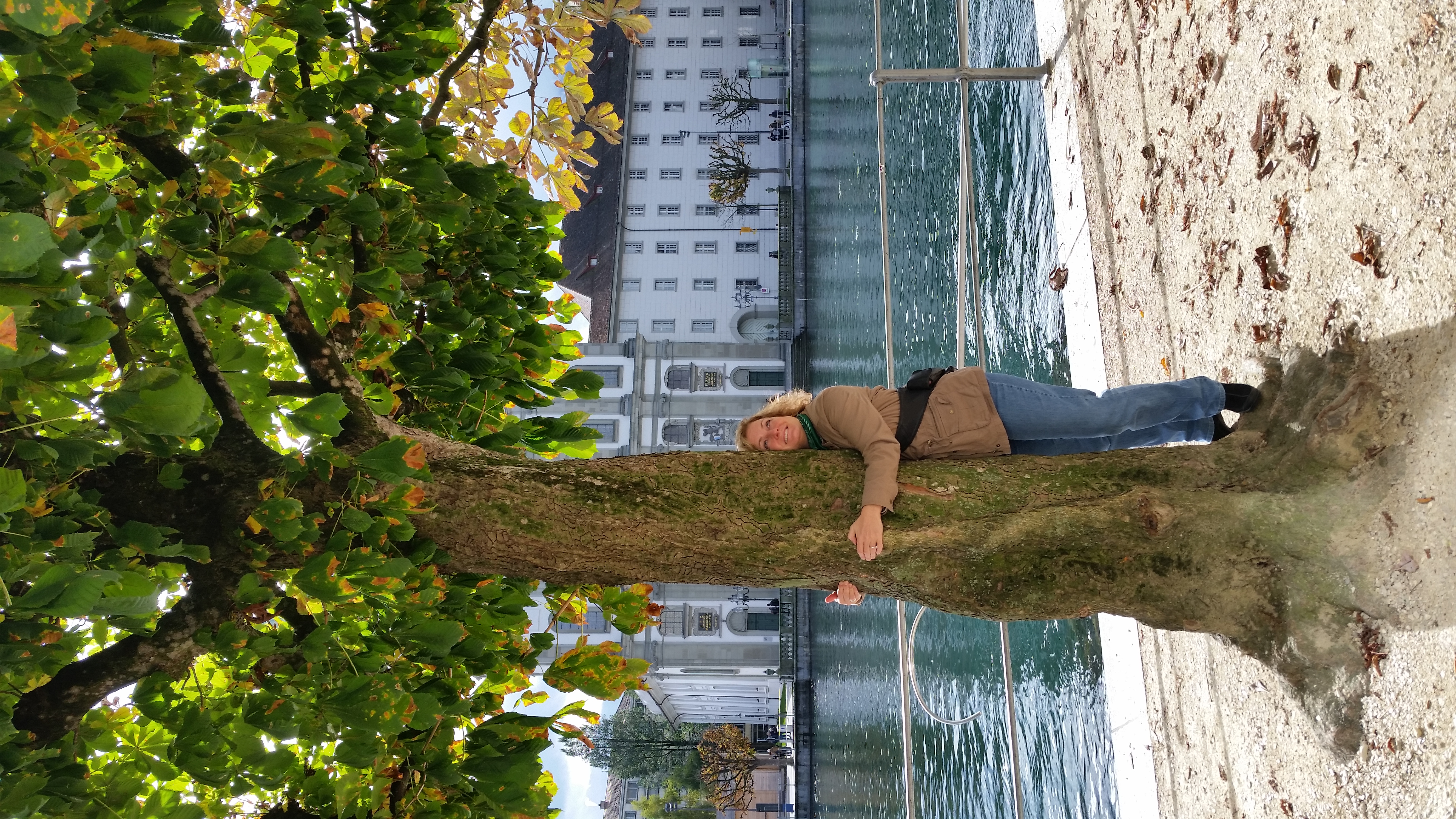 Tree Hugging in Luzern