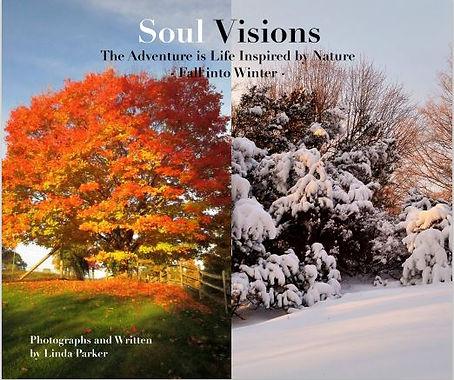 SOUL VISIONS BOOK COVER.JPG