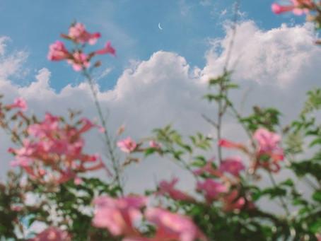 New Moon de Mai : Envole toi!