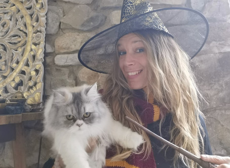 Libère ta sorcière!