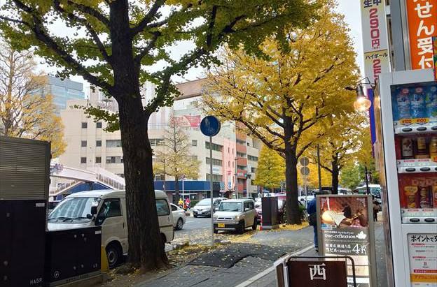 仙台の紅葉2(西島整体院前)
