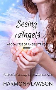 Seeing Angels 1 JPG_edited.jpg