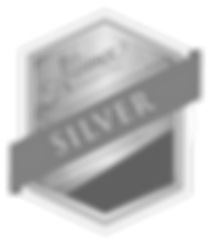 Sponsor_Icons_Silver.png