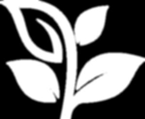 leaf_white.png