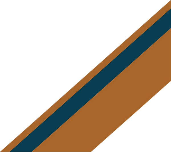 bars_cropped_orange and dark blue.png