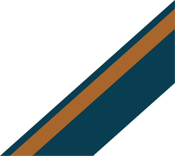bars_cropped_dark blue and orange.png