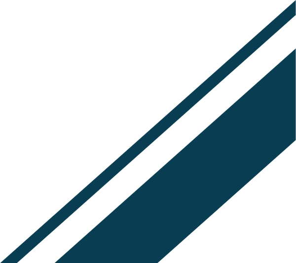 bars_cropped_dark blue.png
