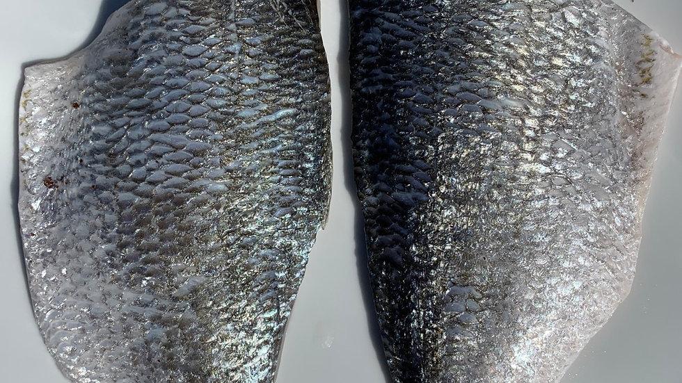 Sea Bream fillets (Sparus aurata) 1 fillet