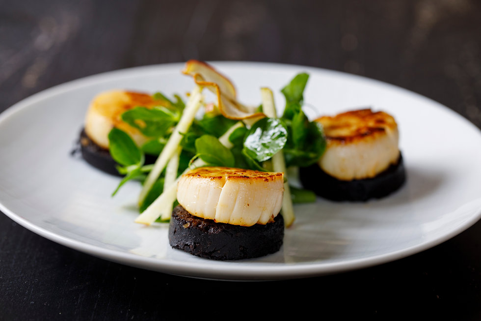 Scallops with black pudding and apple an