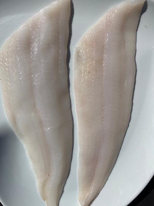 Scottish Sole fillets (Glyptocephalus cynoglossus) 1 fillet