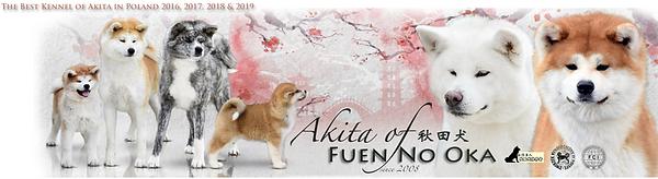 Akita of Fuen No Oka.png
