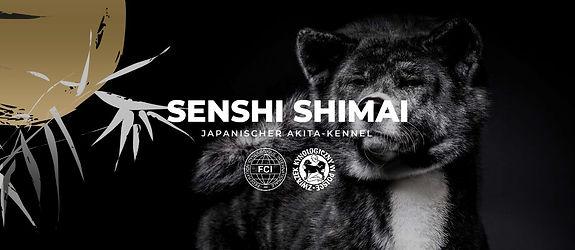 Senshi Shimai.jpg