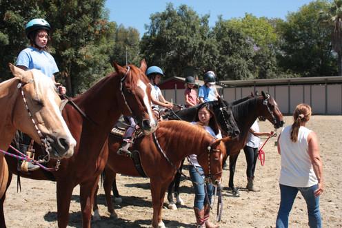 Altadena Stables Summer Camp 2018