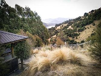 Residency-View.jpg