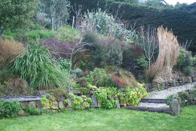 A coastal grassy hillside in Taylors Mistake Canterbury