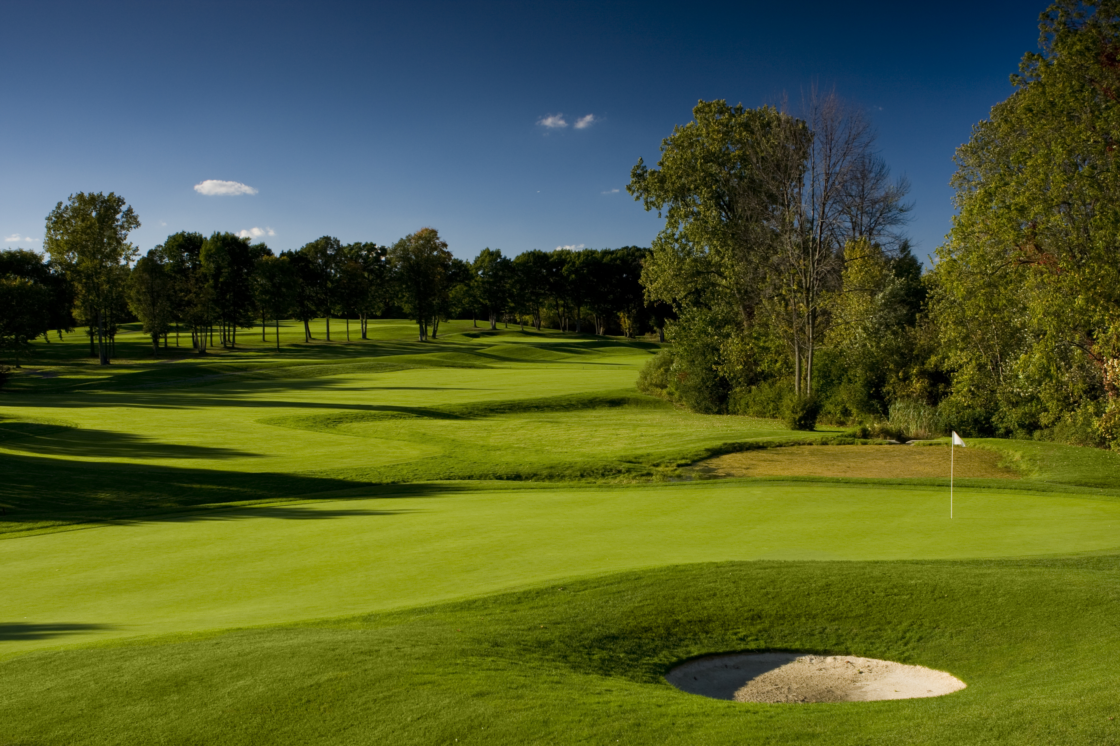 Pine Trace Course.jpg