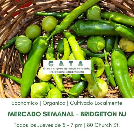 Mercado Semanal Bridgeton esp JULIO 15.png