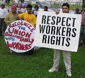 catas-work-workers-rights.jpg