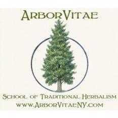 Arborvitae.jpg