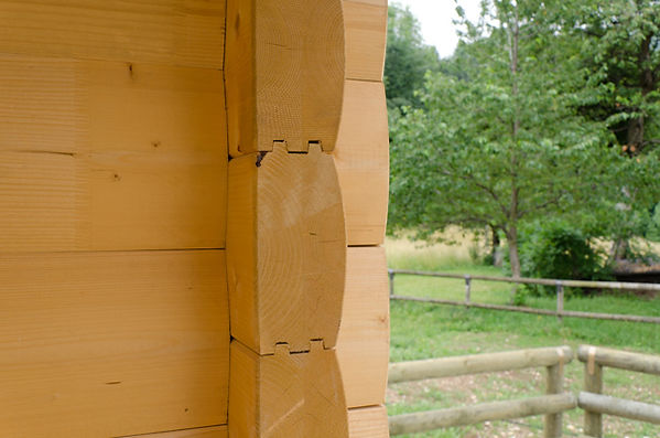 casa in legno a tronchi blockhaus