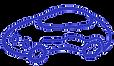 Logo%20Sgnaolin_edited.png