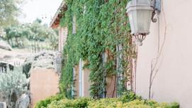 Milagro Winery | Romana Ca | Mallory & Lance
