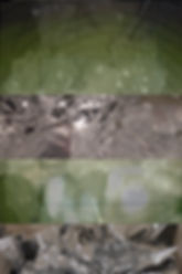 collage_09_sm.jpg