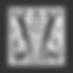 V logo grey background.png