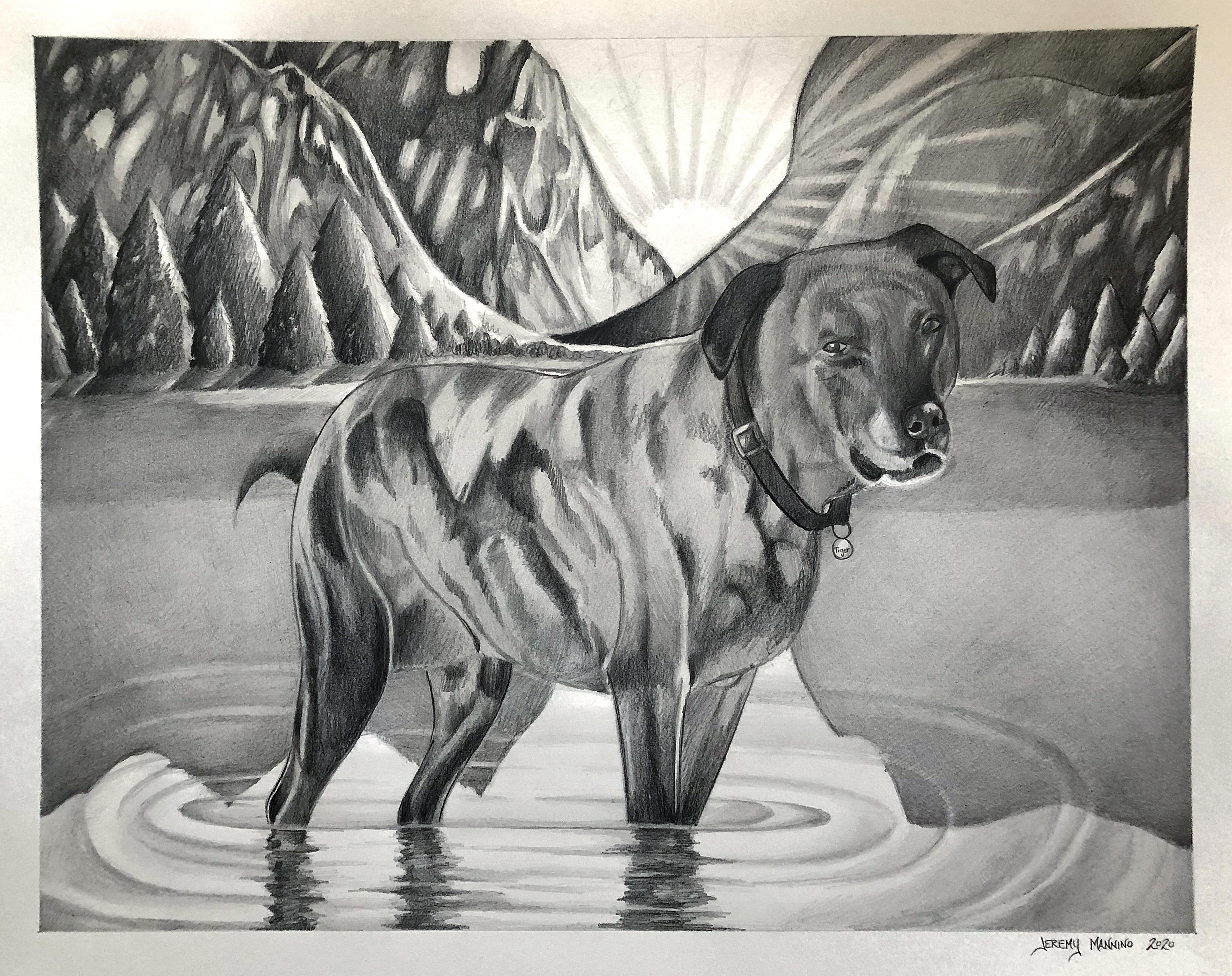 Pet Portrait-Tiger