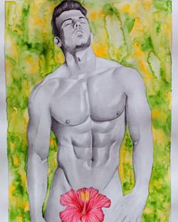 Nude Hibiscus