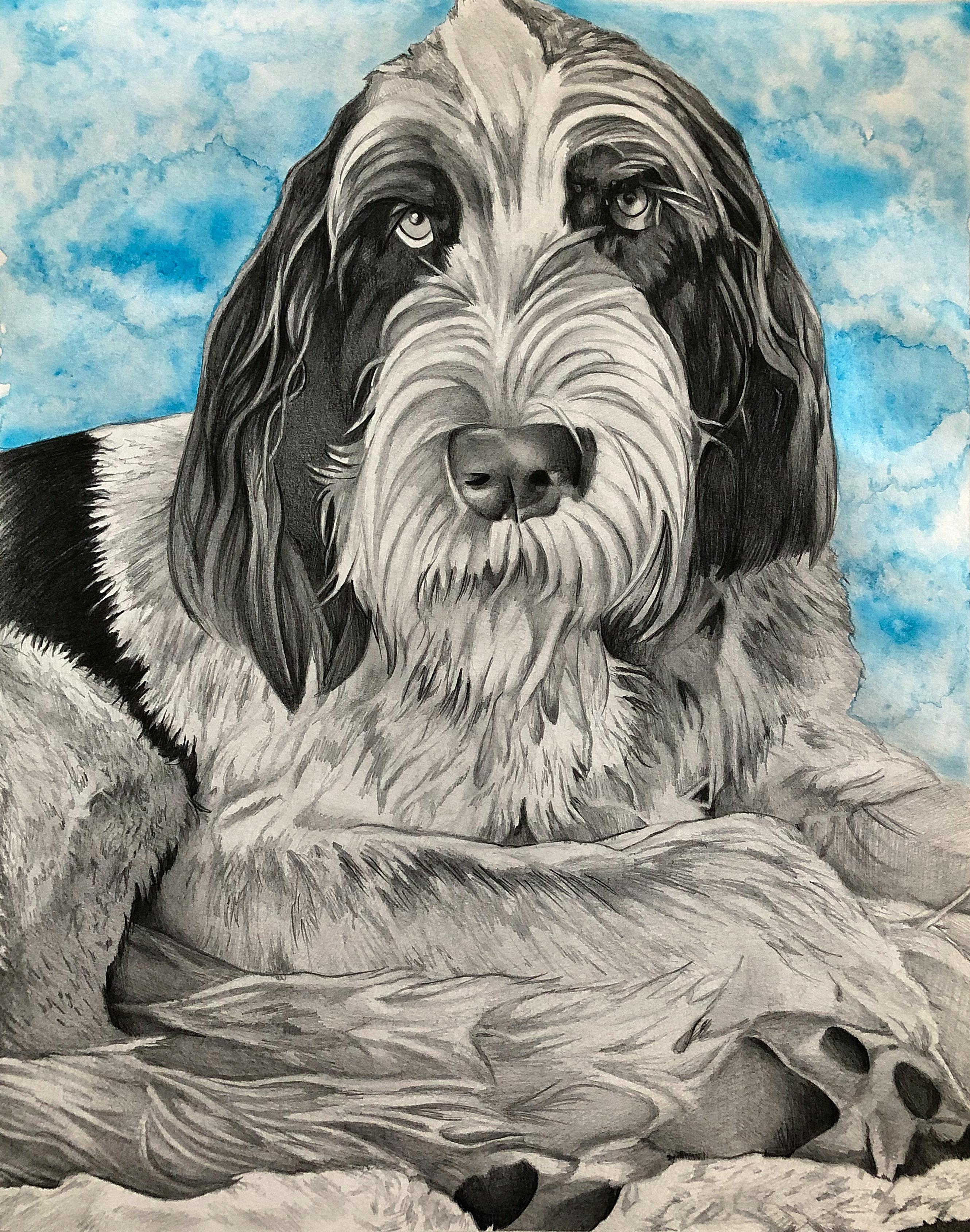 Pet Portrait-Enzo