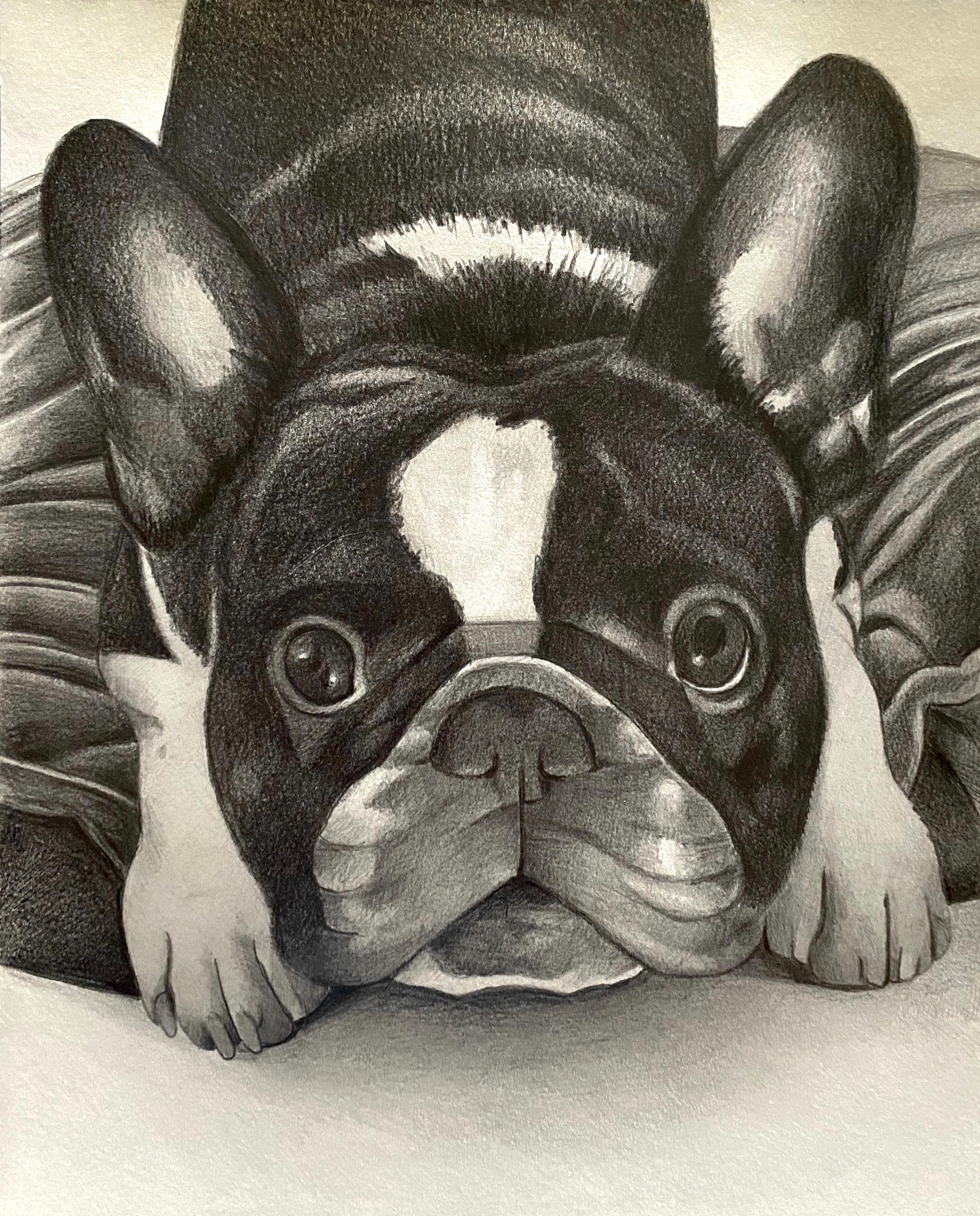 Pet Portrait: Ego