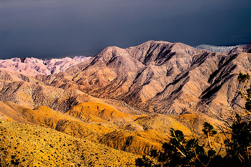 In the Summer - Kings Canyon