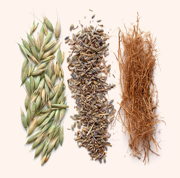 Infuse_Herbs-3.jpg