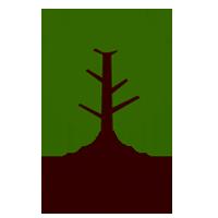 Greening Tjuntjuntjara and Tree Planting Volunteer Program 23rd Sept to 7th October 2021