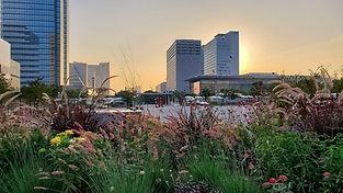 花の広場 シンボルプロムナード公園