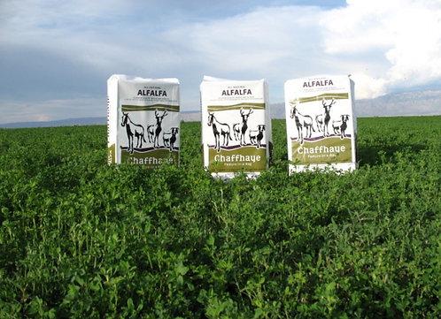 Chaffhaye - Organic, non-GMO