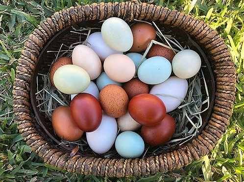 Eggs - Organically Fed, Variety Pack - pastured, soy-free, non-GMO
