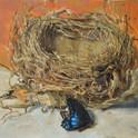 nest_swallowtail.jpg