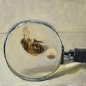 honeybee_magnifiying_glass.jpg