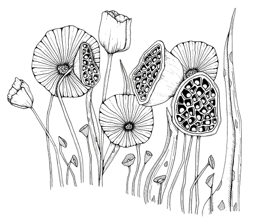 Weird Flowers-white.png