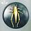 Thumbnail: Faux Taxidermy Bugs