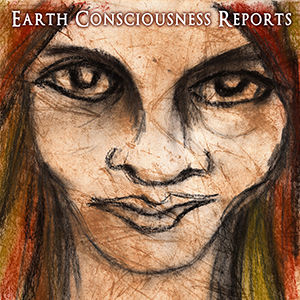 earth consciousness report seminar roger hanson story waters