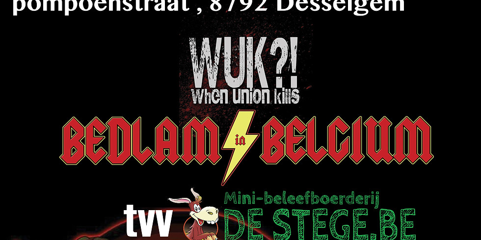 Bedlam in Belgium plays JH Jakkedoe Desselgem