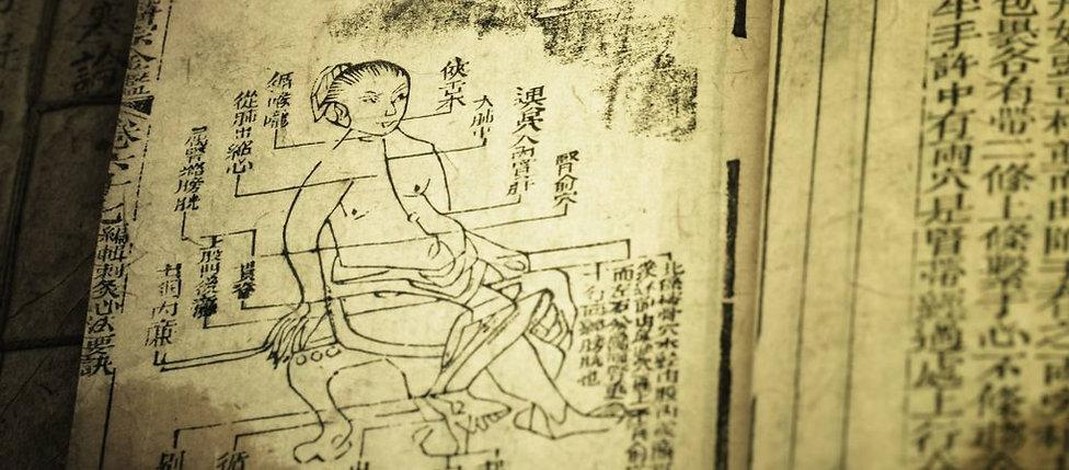 qi_yin_yang_five-elements_the-meridians-