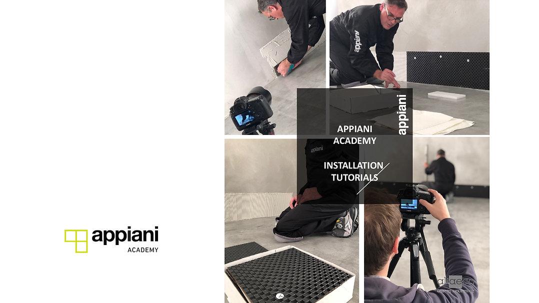 Appiani Mosaic Academy.jpg