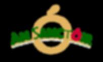 An Sanctoir Logo.png