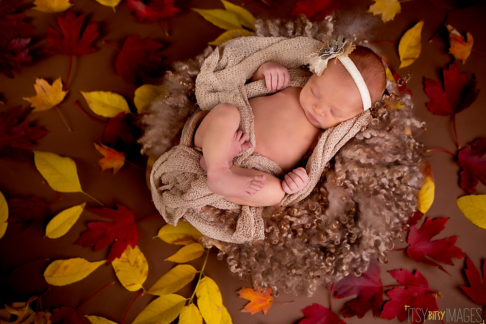 Earthy and organic newborn picture with fresh falling leaves by Overland Park photographer