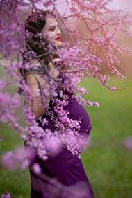 Red Bud Tree Stunning Maternity Photography