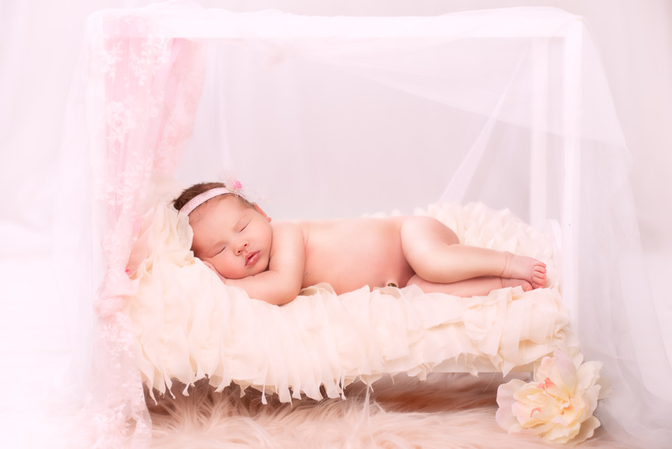 Princess Draped Newborn bed photography
